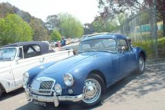 cars-we-saw-in-OZ.-Canberra-1